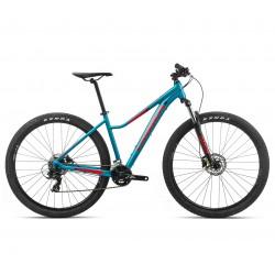 MX 29 ENT 50 2020